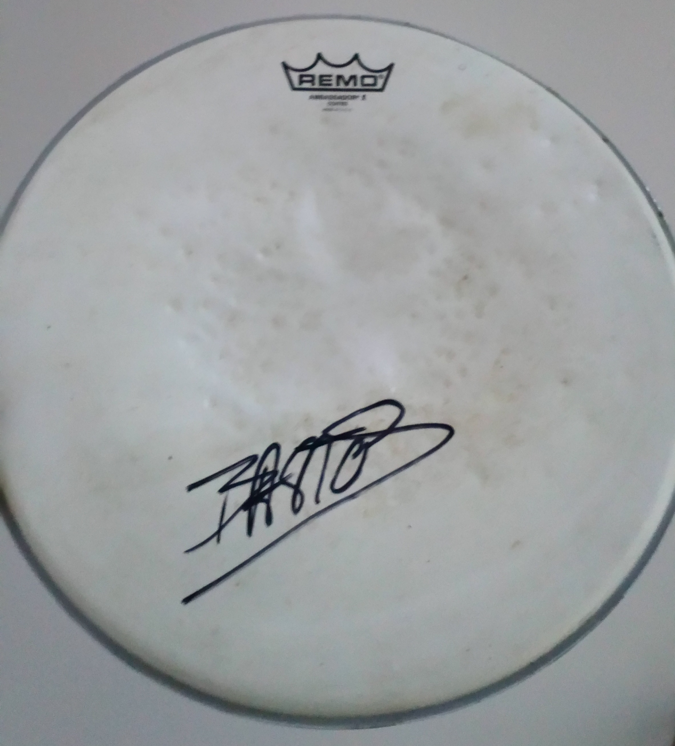 one snare drum head by remo used live and signed nicolas bastos. Black Bedroom Furniture Sets. Home Design Ideas